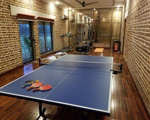 table tennis in farm house